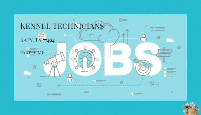 jobs in katy tx